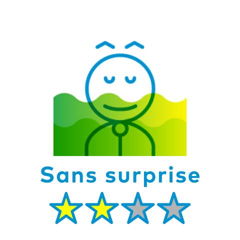 Suggestion - Sans surprise