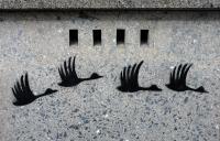 Photo de 4 oiseaux peints sur un mur, peint à l'aide d'un pochoir