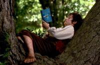 Photographie de Frodon (le personnage principal du seigneur des anneaux), tiré du film de Peter KJackson - en train de lire un livre dans un arbre