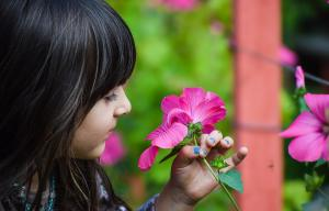 Une petite fille sent des fleurs roses dans un jardin