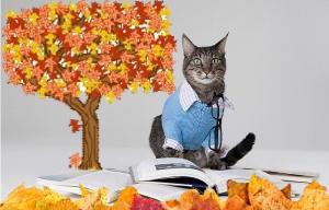 Chat portant une chemise et des lunettes, se tenant devant un livre sous un arbre aux couleurs d'automne