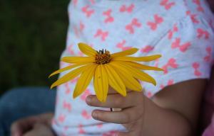 Photographie représentant une main d'enfant tenant une fleur