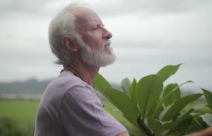 Un vieil homme avec une barbe blanche est dans la nature et regarde au loin