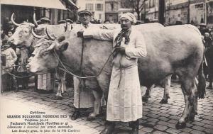 Carte postale ancienne représentant deux boeufs, une femme et un homme sur une place de marché