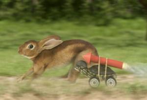 Un lièvre court et une tortue qui se tient à côté a une dynamite sur sa carapace pour aller plus vite